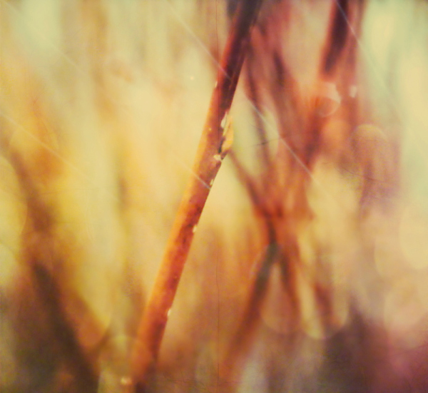 abstract 2/2