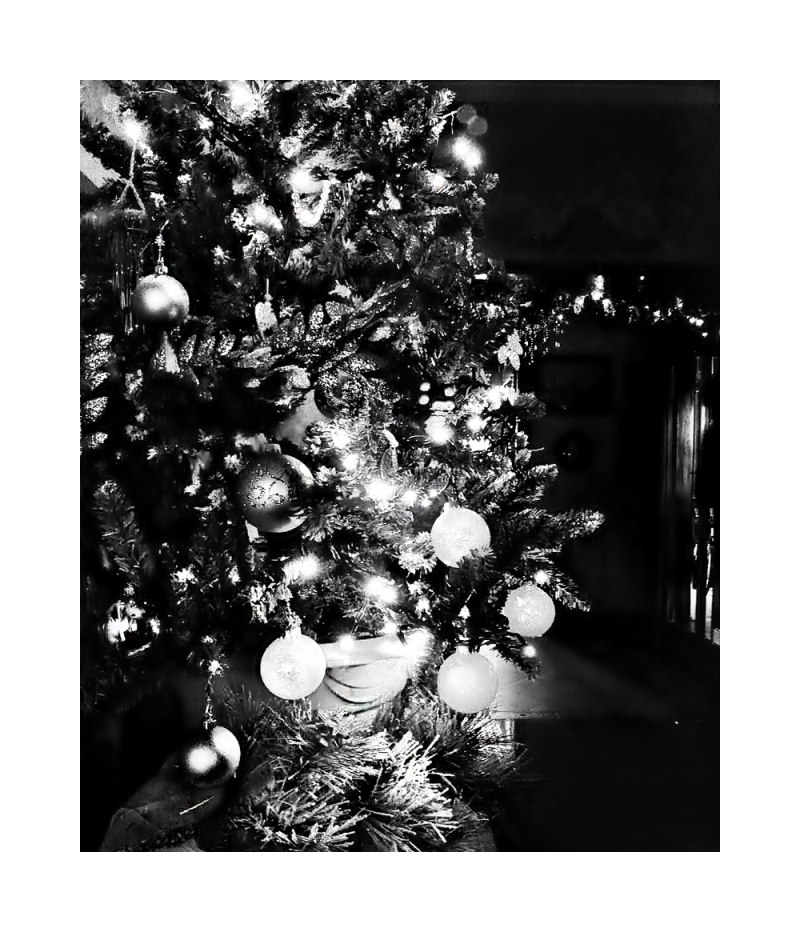 (black &)   White Christmas