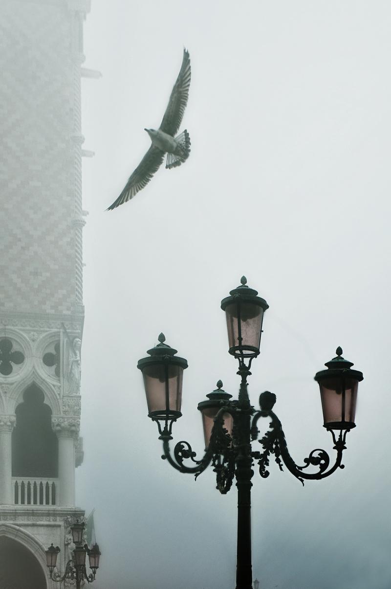 Venetian rhapsody