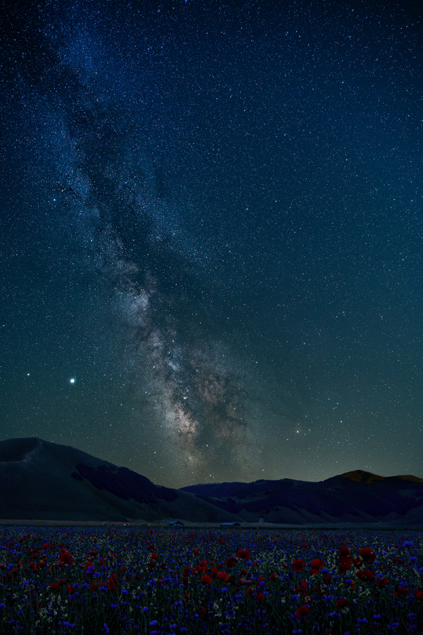 Milky way in Castelluccio di Norcia