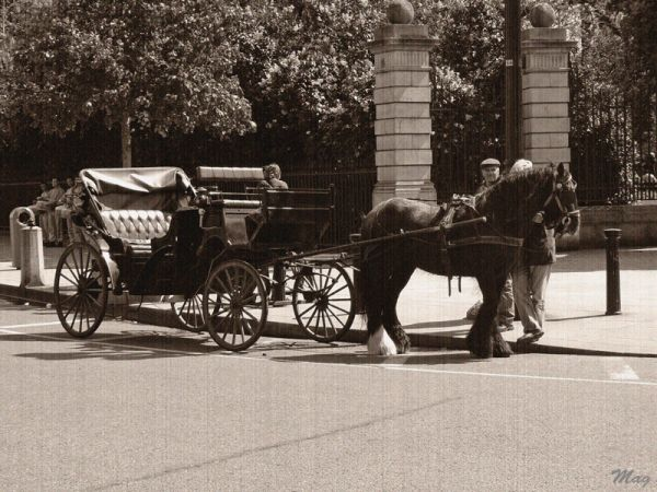 Picture of a horse-drawn carriage, Dublin