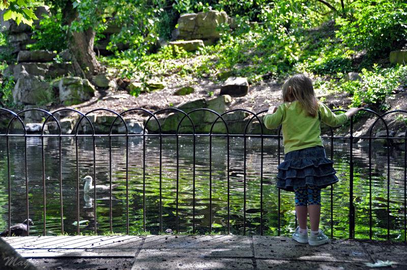 La petite fille et la mouette, Dublin 2009