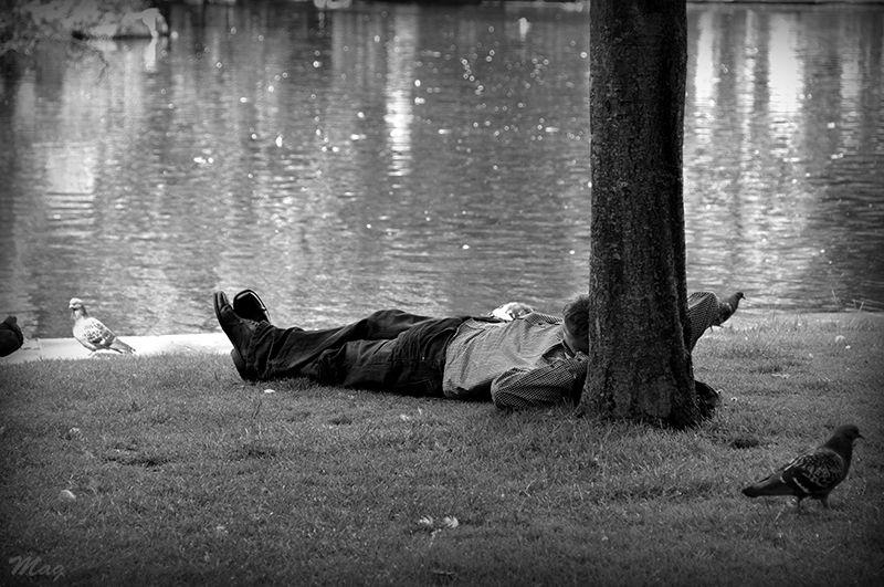 Une sieste dans le jardin de St Stephen's Green