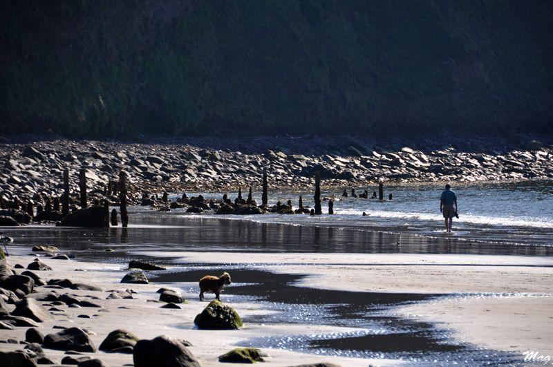Ring of Kerry Beach
