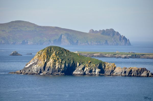 Dingle's Peninsula