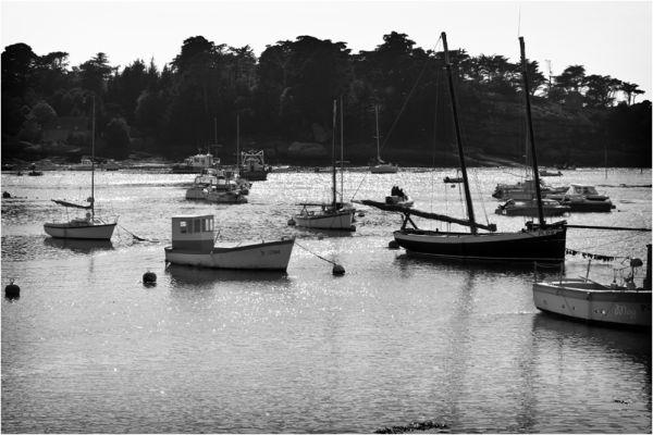 Ploumanach's harbour