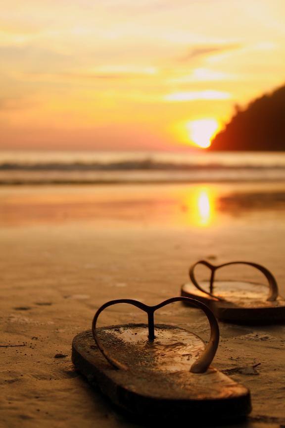 Flip Flops basking in the sunset...