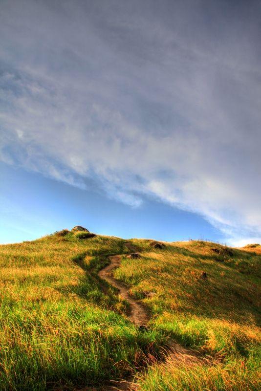 grasslands windy road dark clouds hill