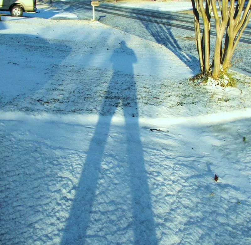 Xmas snow 2009