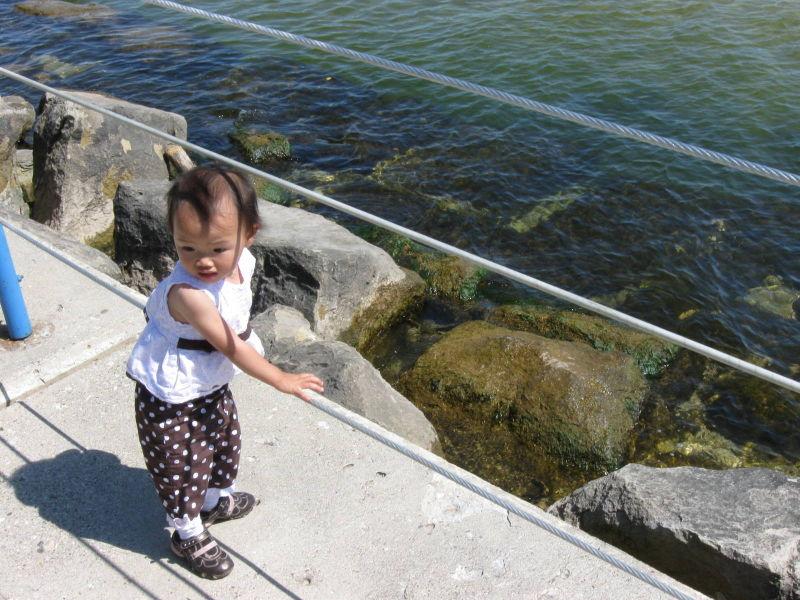 Muskegon Pier