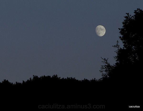 My first succesfull moonshot...