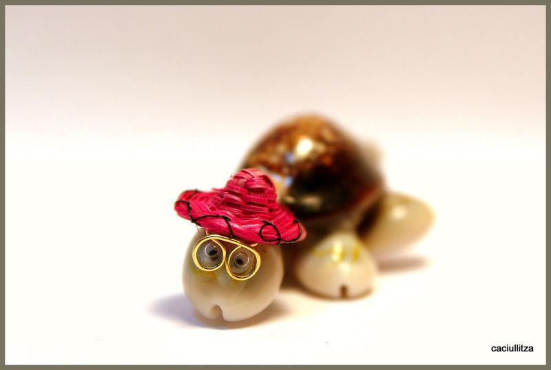 Emma's turtle (2)