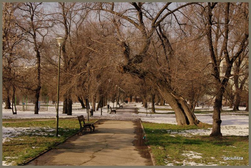 Almost spring in Bucharest!