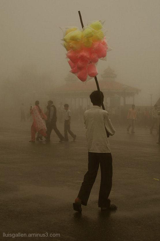 shimla nepal