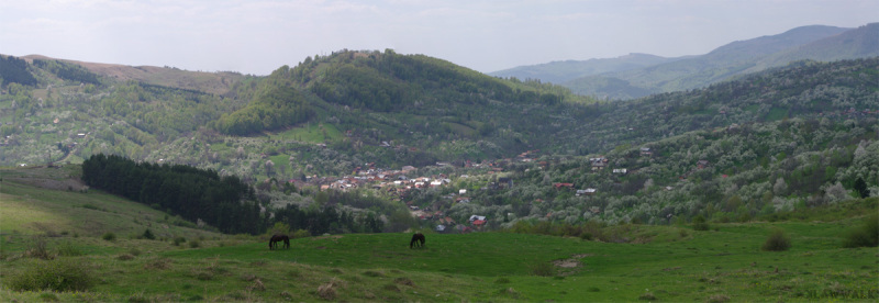 Panoramic la Teșila