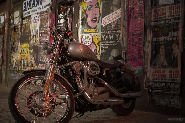 Harley by Night