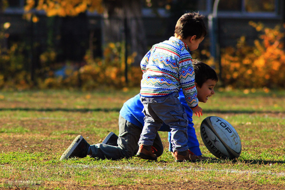 Plaing Rugby