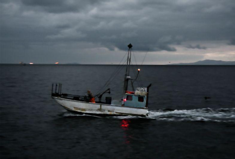 Squid Boat