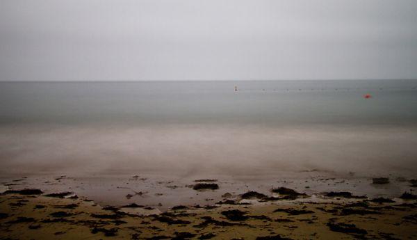 Santa-Barbara, Ledbetter-Beach, surf, kelp