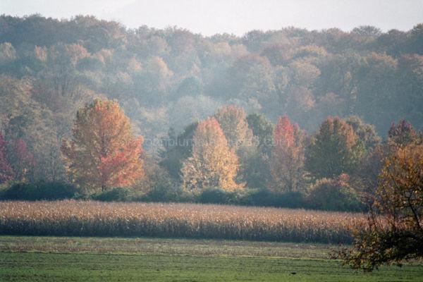 Herbstlandschaft..