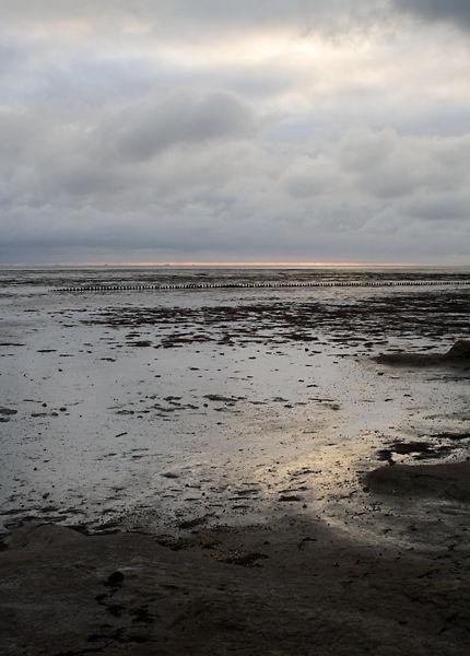 mudflats