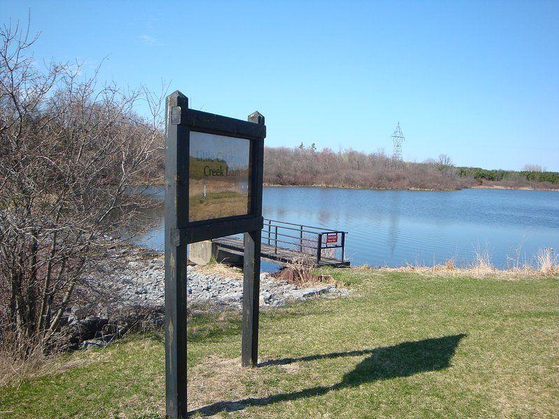 Creek, dam, conservation park