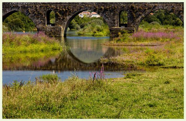 Bridge Archs