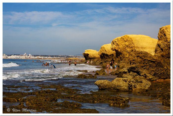 Golden Vigilant Rocks