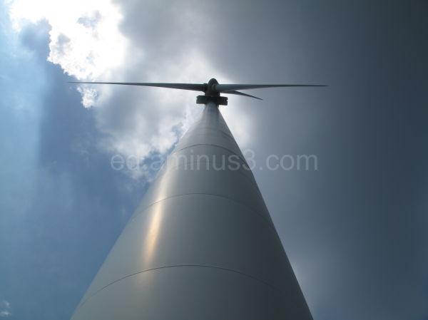 Toronto Windmill
