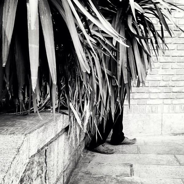 ahmad aghasiani,احمد آقاسیانی,iPhotography