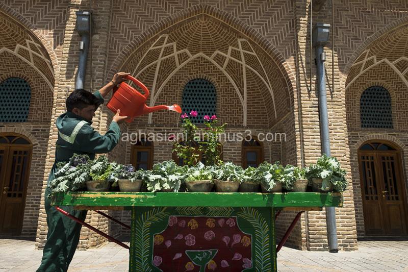 Tehran City 2015