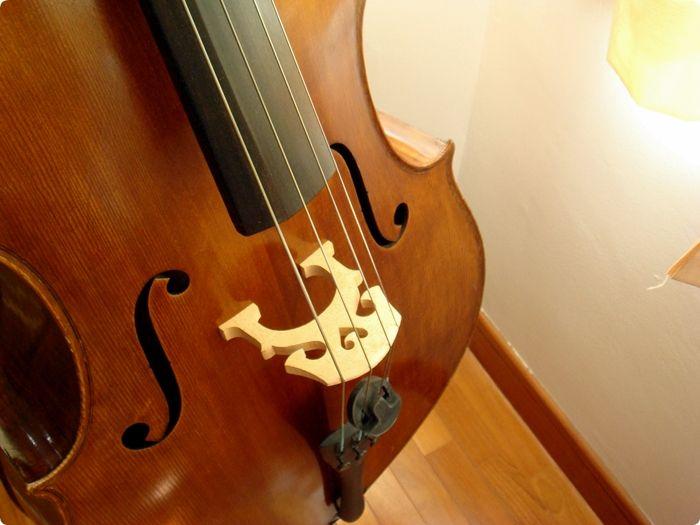 mellow cello