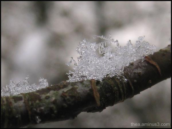 snow macro