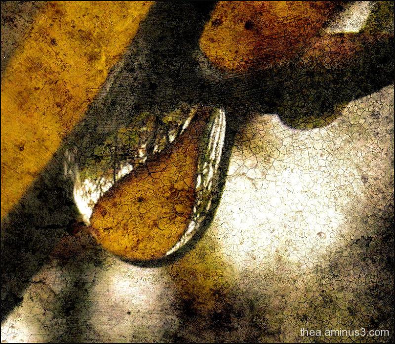 rain leaf waterdrop macro