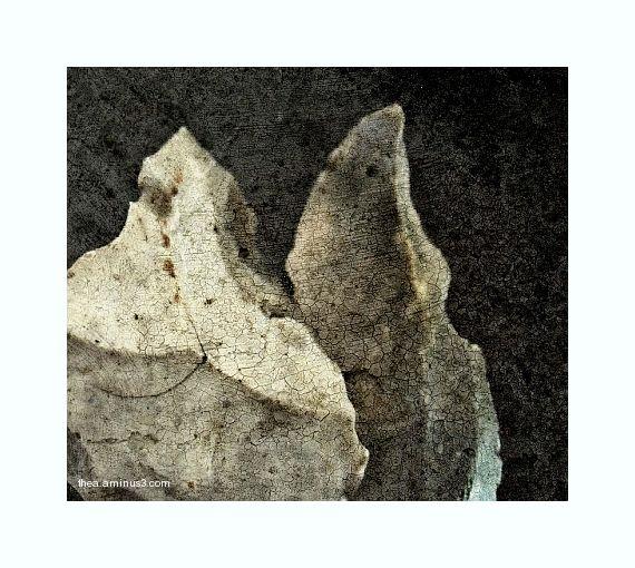 tools stone age macro
