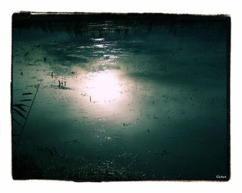 water sun landscape