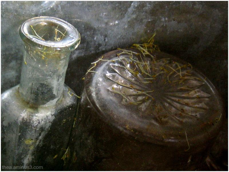 glass bottle petals macro