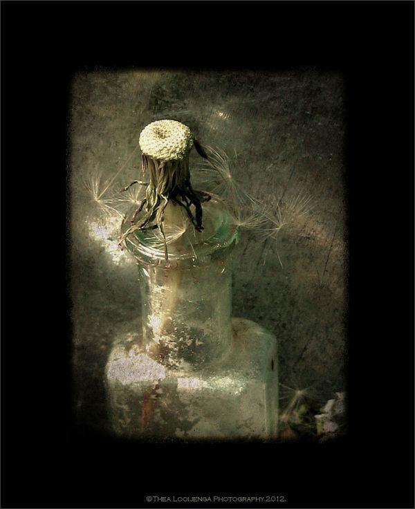 bottles glass still-life macro processed