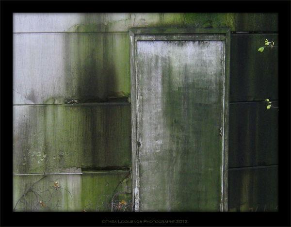 (secret) door.....