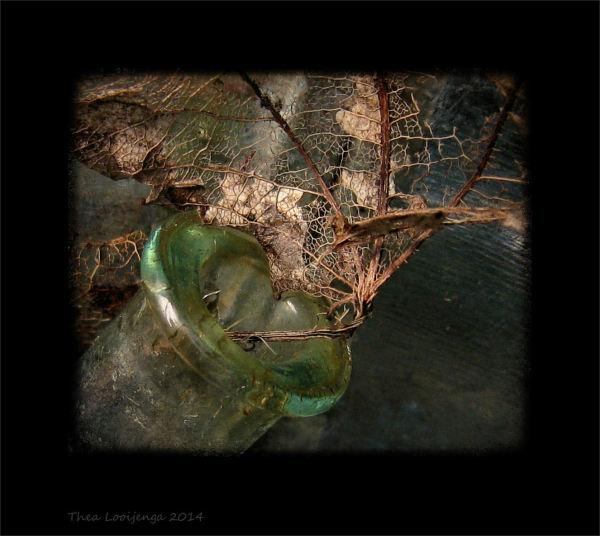 macro leaves glass