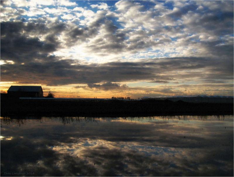 landscape water reflections Friesland
