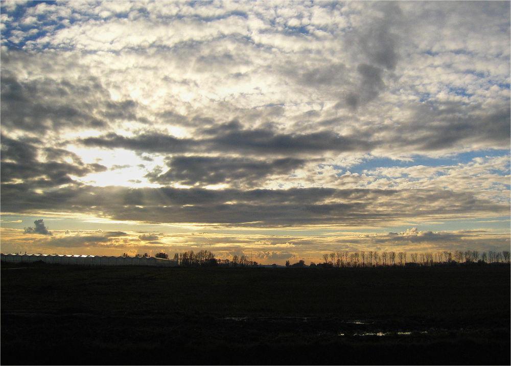 landscape Friesland
