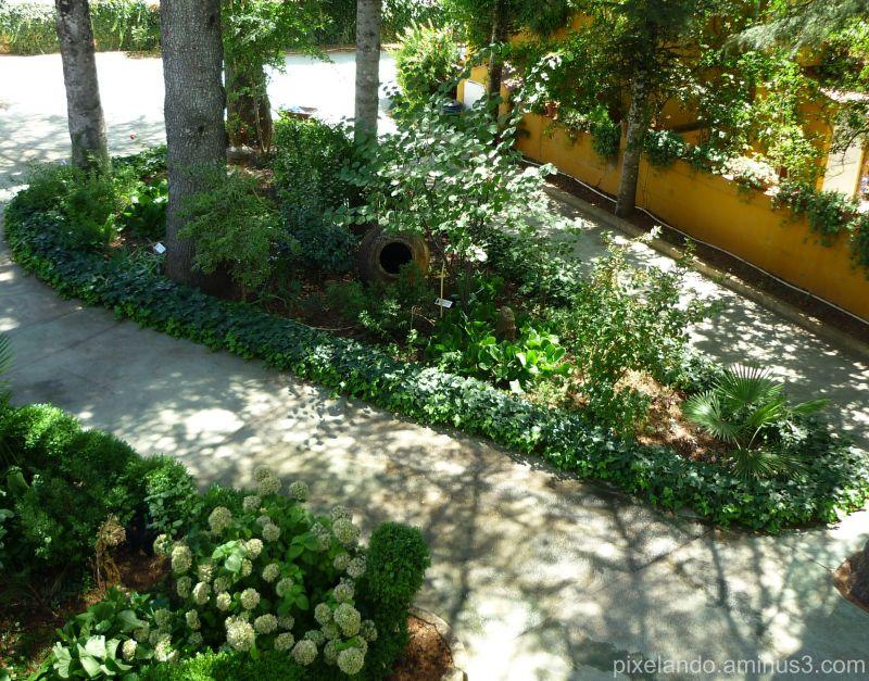 Jardin en Villa Onuba Fuenteheridos Huelva