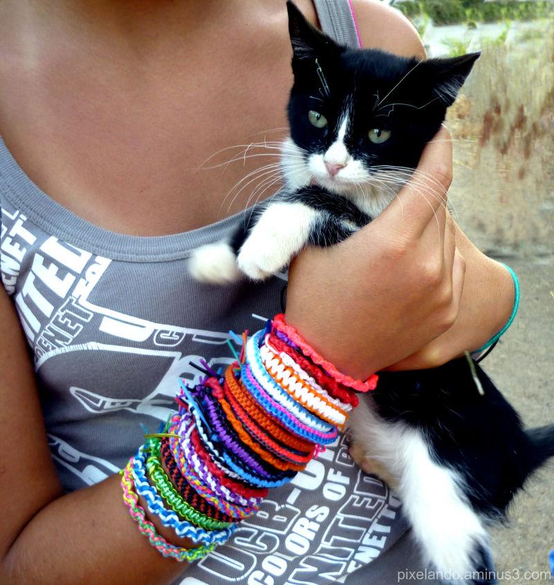 niña con muchas pulseras sujeta gatito