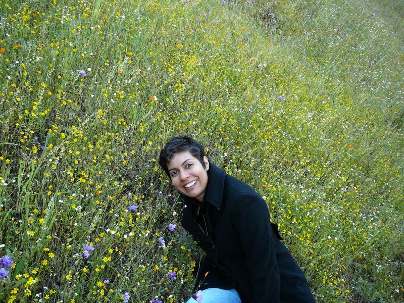 Hiking poppyland