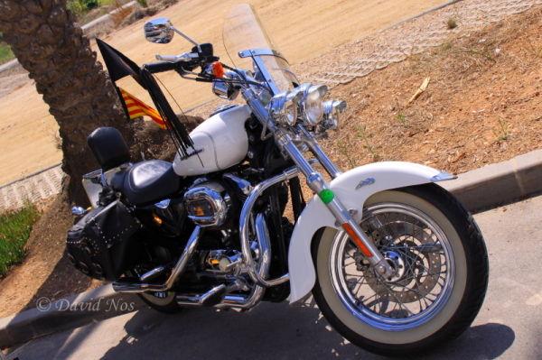 Harley Davidson (II)