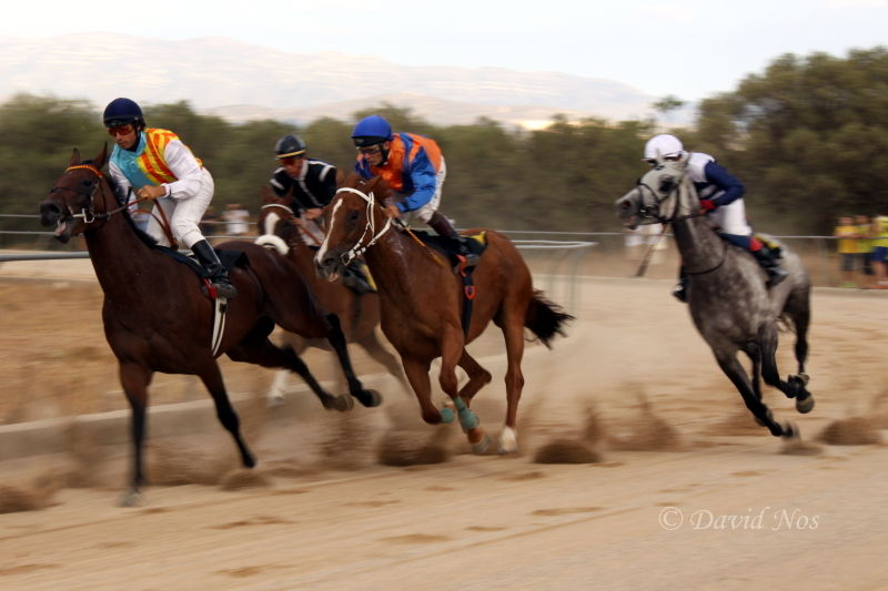 Horse race: turning point (II)