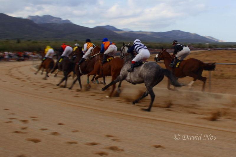 Horse race: turning point (III)