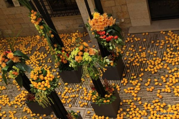 Girona, A time for flowers