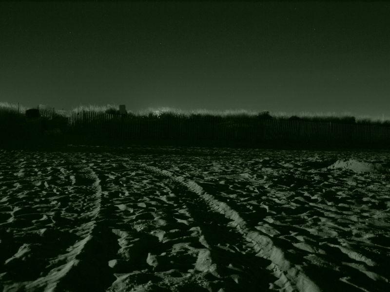 ATV tracks in the sand